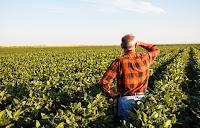 Έρχεται ο εξωδικαστικός συμβιβασμός για τους αγρότες με μεγάλο κούρεμα και πολλές δόσεις