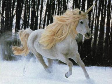 Unicórnio, criatura mitológica, que tem a forma de um cavalo, geralmente branco, com um único chifre em espiral no meio da testa.