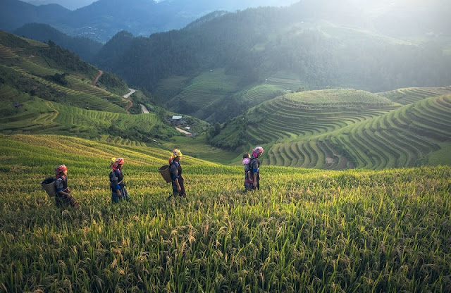 Vietnam - the most exciting destination in the world in September