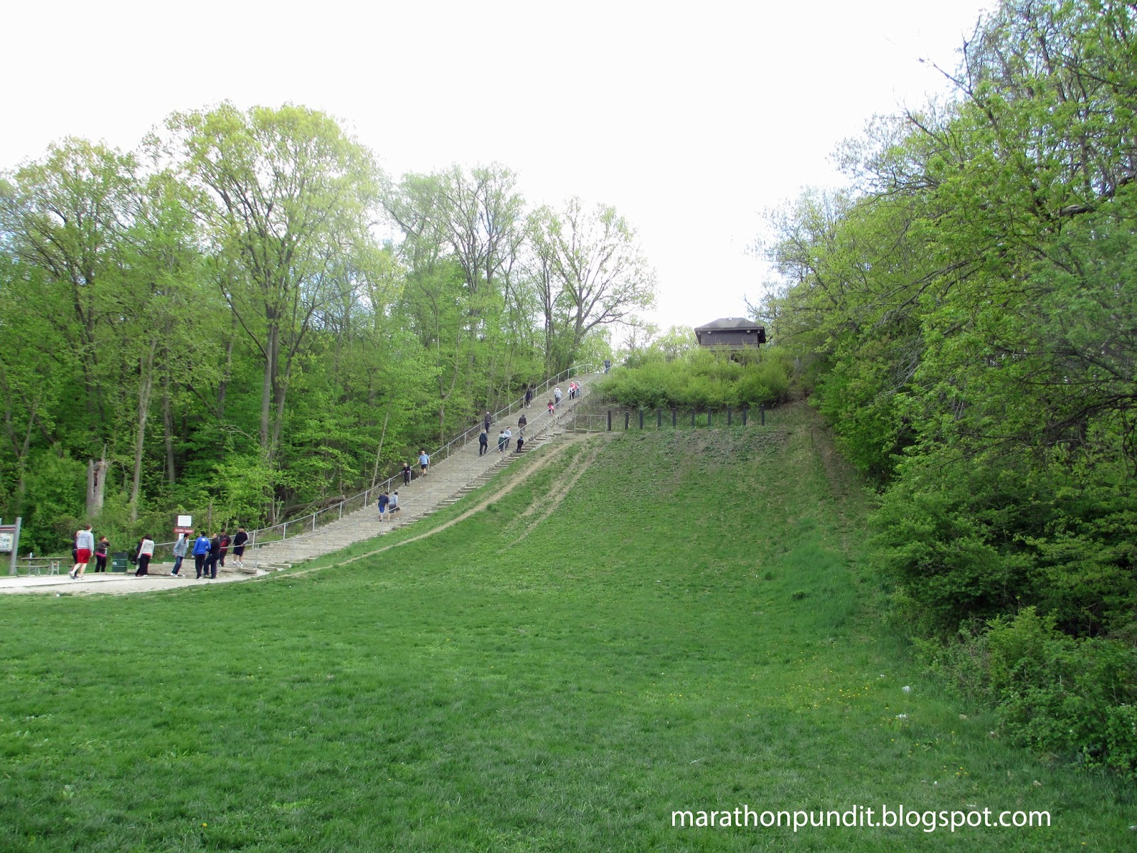 Swallow Cliff Toboggan Slides 54