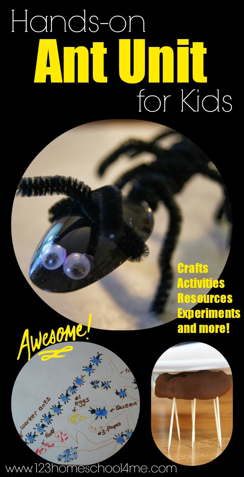 Ant Unit - this is such a fun hands on but unit for preschool, kindergarten, first grade, and 2nd grade including not only fun bug crafts and ant art activities, but ant science experiments and so much more!