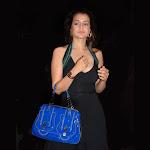 Amisha Patel Telugu actress Pics
