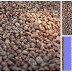 FREE Seamless Gravel Texture (Diffuse, Normal, Displacement, Specular, Ambient Occlusion)