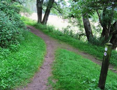 A branch in the path, Deeside walks