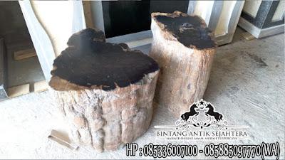 Kursi Batu Alam, Kursi Batu Fosil, Kerajinan Batu Fosil
