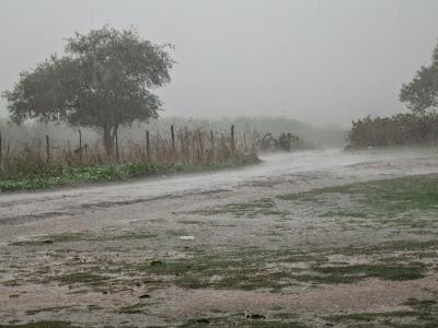 Resultado de imagem para imagens de chuvas