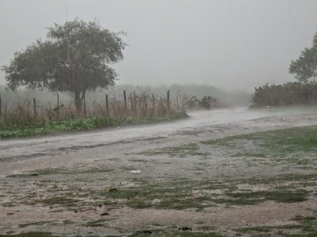 Resultado de imagem para IMAGENS chuvas RN