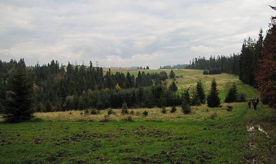 Większa polana przed doliną Bielanki.