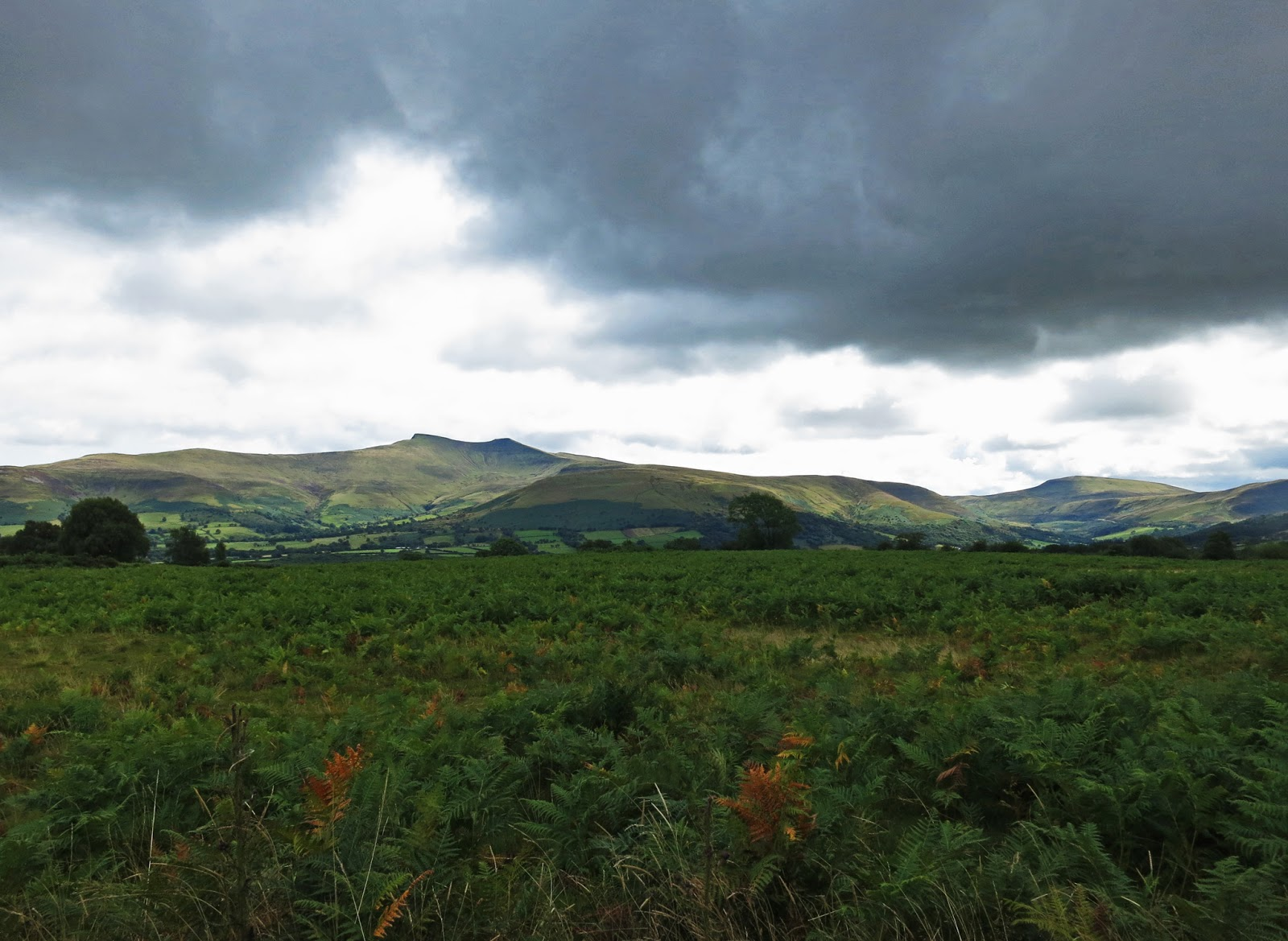 Brecon Beacons August 2014