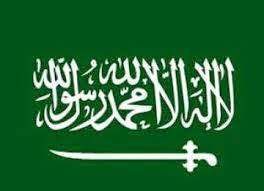 Profil Negara Berkembang Arab Saudi