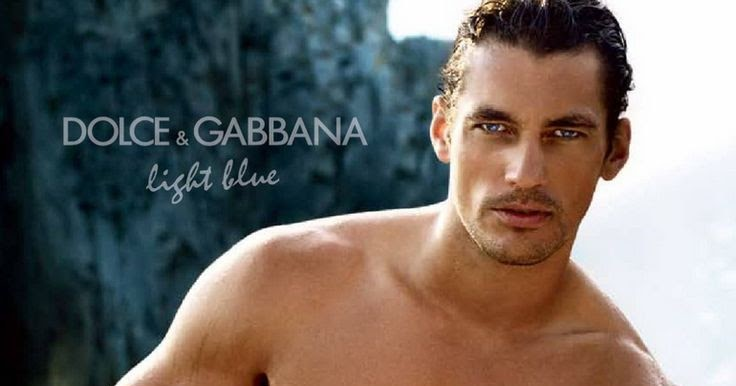 Dolce Gabbana Light Blue Masculino Minhas Impressoes