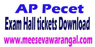 AP Pecet 2016 Exam Hall tickets Download