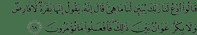 Surat Al-Baqarah Ayat 68