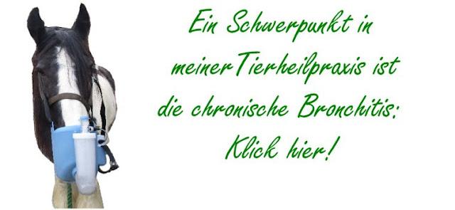 http://www.tierheilkundezentrum.eu/pferde/krankheiten/asthma-und-daempfigkeit/