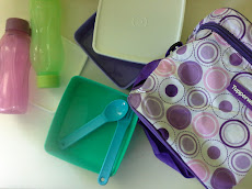Tupperware 'Take and Go' for Christmas Gift