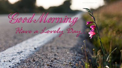 good-morning-have-a-lovely-day-wishes-flwoer-images
