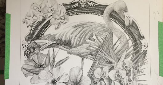 Step by Step Flamingo for Bird Whisperers