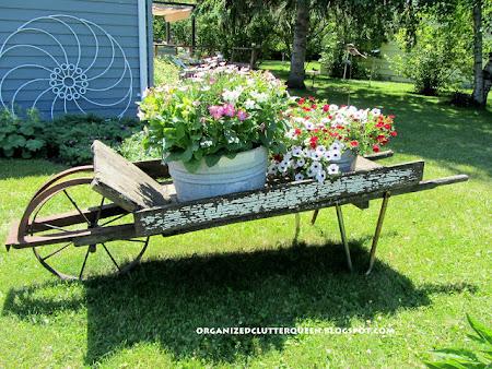 My Wheelbarrow