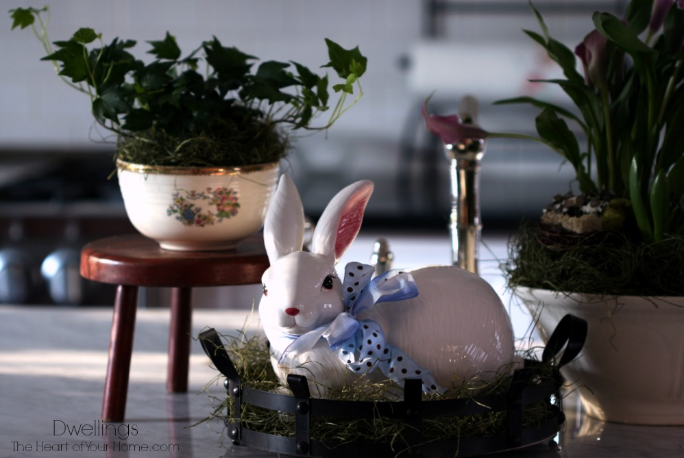 Spring Bunnies and Blooms