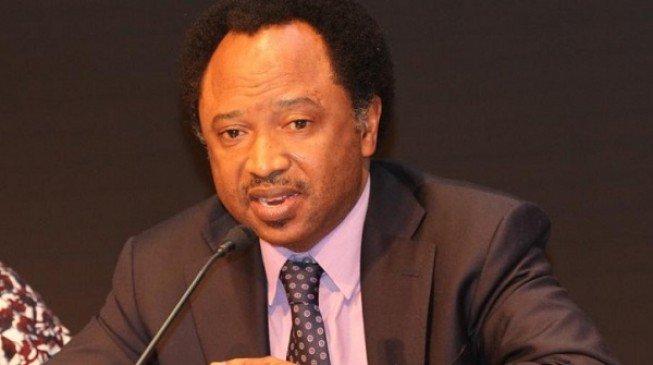 APC vs PDP: Shehu Sani mocks those calling for Saraki's removal as Senate President