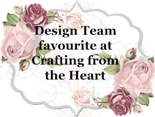 design team favourite 213