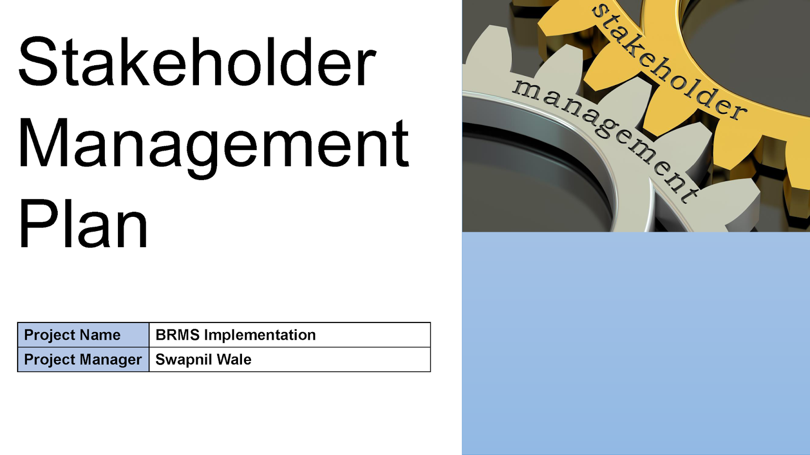 management plan templates free
