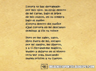 poemas de seduccion