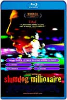 Slumdog Millionaire (2008) HD 720p Subtitulados