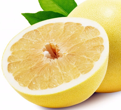 Are Grapefruit Poisonous to dogs