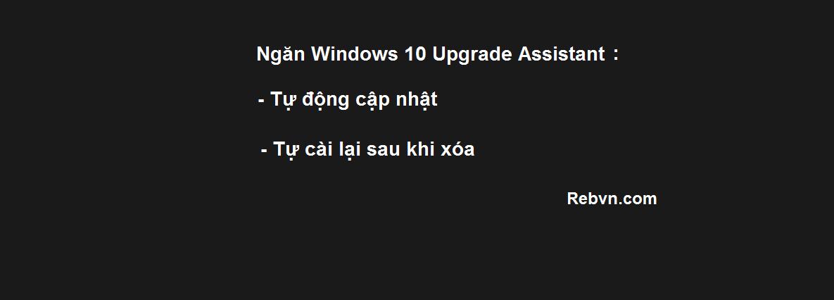Ngăn Windows 10 Upgrade Assistant tự động tải cập nhật và cài lại sau khi xóa.