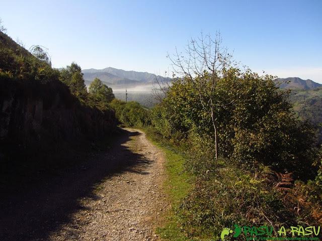 Finalizando la ruta del Bosque de Cea