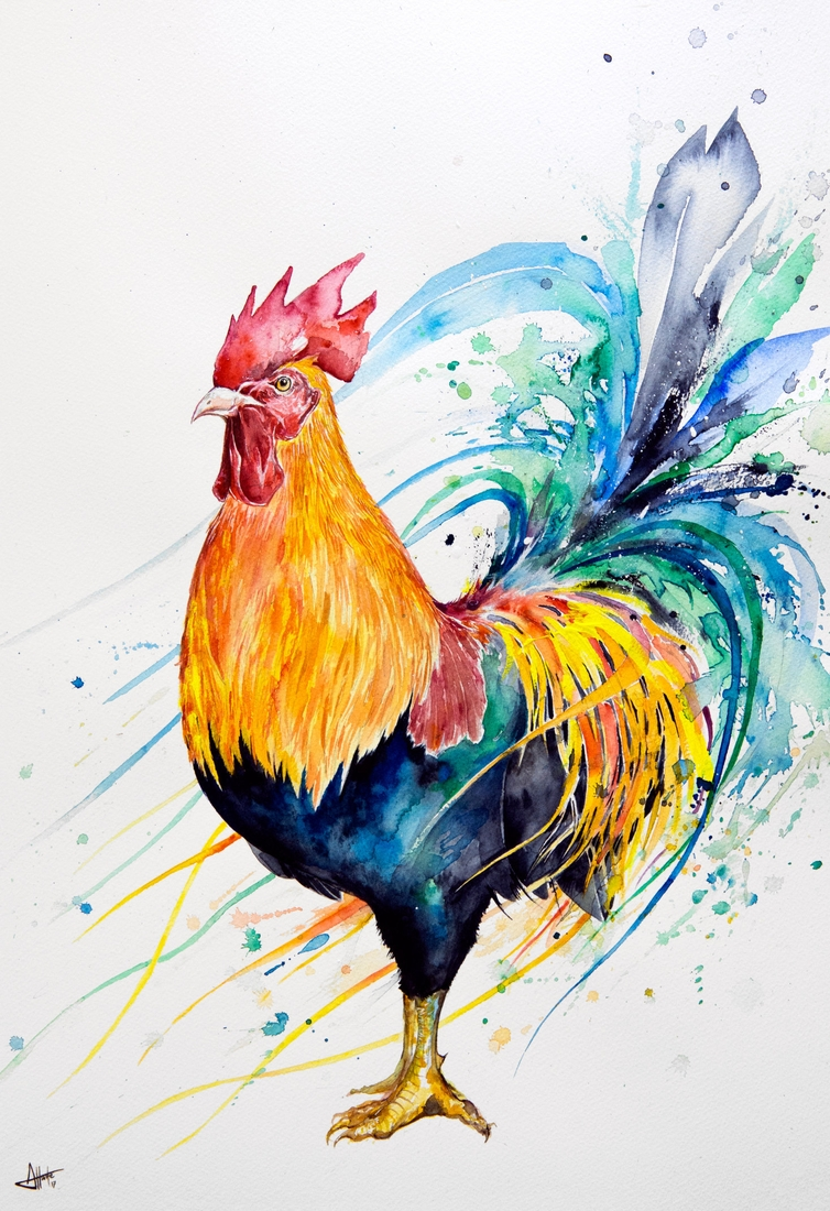 09-Cockerel-Marc-Allante-Wild-Animal-Paintings-with-a-Splash-of-Color-www-designstack-co