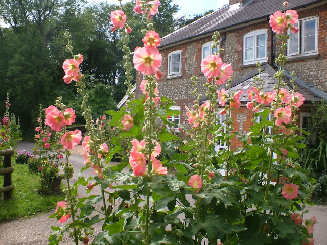 picture of hollyhocks outside cottage-best British gardening blogs