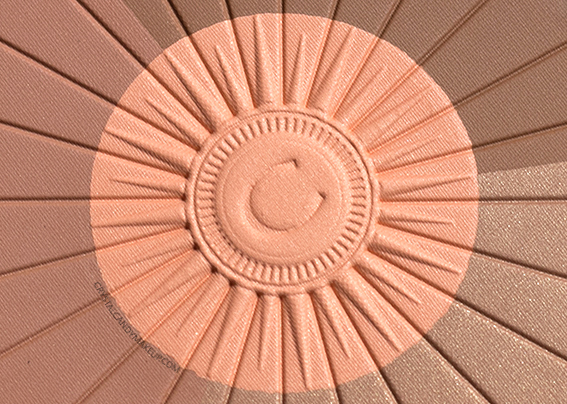 Clarins Sunkissed Collection Bronzer Blush Powder Review Photos
