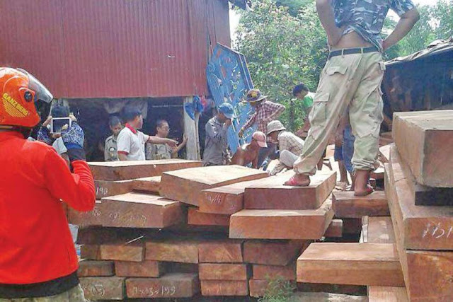 People work to clear luxury timber earlier this month after a truck allegedly belonging Try Pheap overturned. Photo supplied