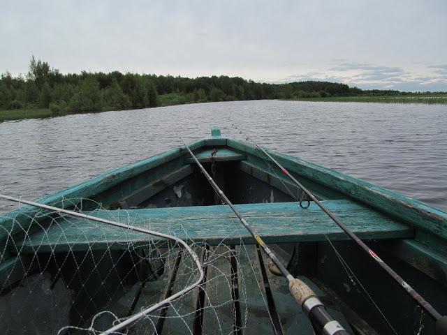 на реке в июне