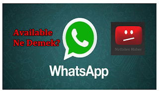 Whatsapp durumları ve Video is not Available hatası