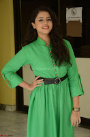 Geethanjali in Green Dress at Mixture Potlam Movie Pressmeet March 2017 054.JPG