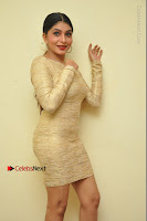 Actress Pooja Roshan Stills in Golden Short Dress at Box Movie Audio Launch  0133.JPG