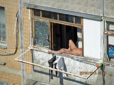 Schreckliche Nachbarn am Fenster im Hochsommer in Deutschland  - lustige Bilder