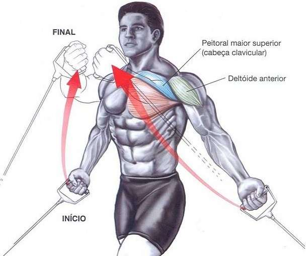 Tổng hợp các bài tập ngực (chests workout)