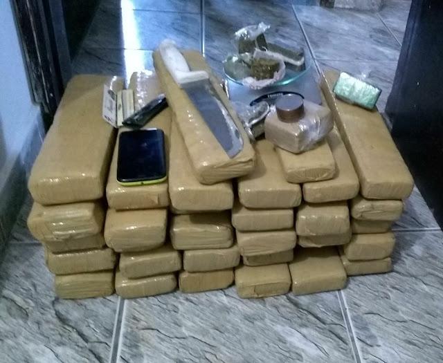 Polícia Civil apreende 32,5 kg de maconha em Alfenas (Foto: Polícia Civil)