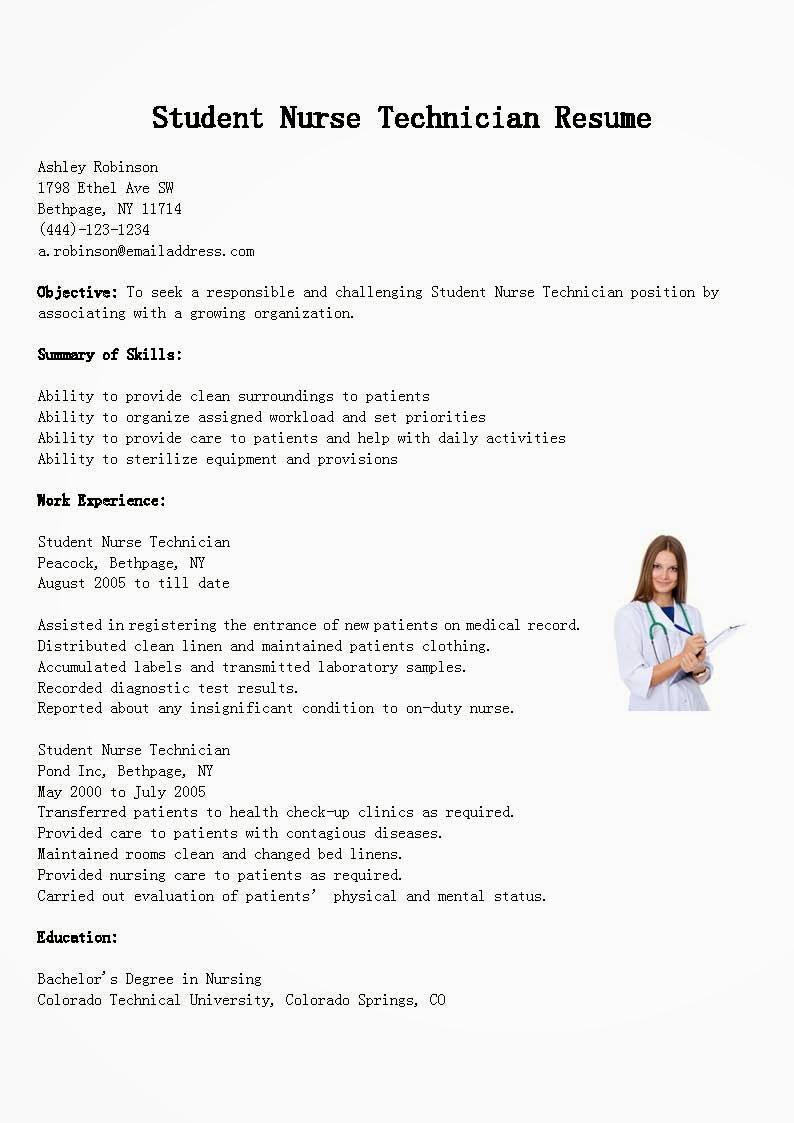free resume creator resume posting top 100 resume