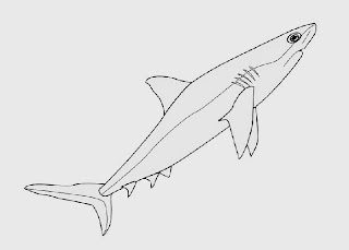 Jaws coloring book coloring pages for Jaws coloring pages