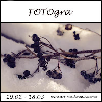http://art-piaskownica.blogspot.com/2016/02/fotogra-rozne-oblicza-tegorocznej-zimy.html