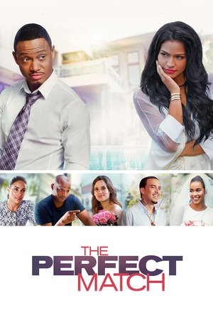 Poster The Perfect Match 2016