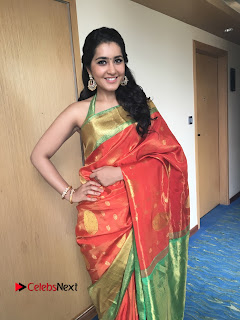 Actress Raashi Khanna Latest Pictures in Silk Saree  0004