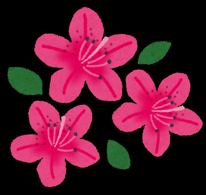 ツツジのイラスト花 かわいいフリー素材集 いらすとや