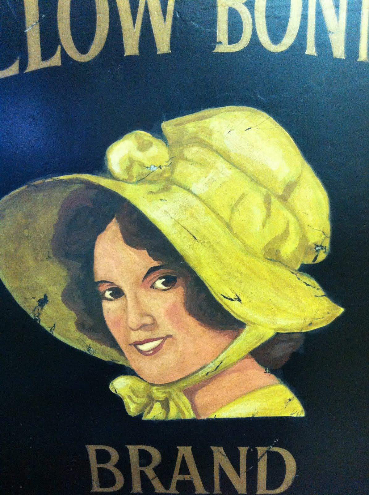 Oklahoma Barn Market Yellow Bonnet Corn Meal Bin
