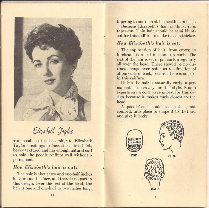 Pin Curl Diagram Seat Ibiza Wiring Lisa Freemont Pages Setting Pattern Fun Hedy Lamarr Anyway I Promised To Provide You With The Other Scanned Patterns And Haircut Advice For These Looks Have Trying Them